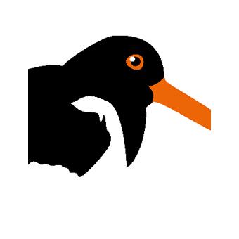 Satakuntalaisen merenrantahuvilan tunnus. Lintu on paikan päältä itse bongattu.